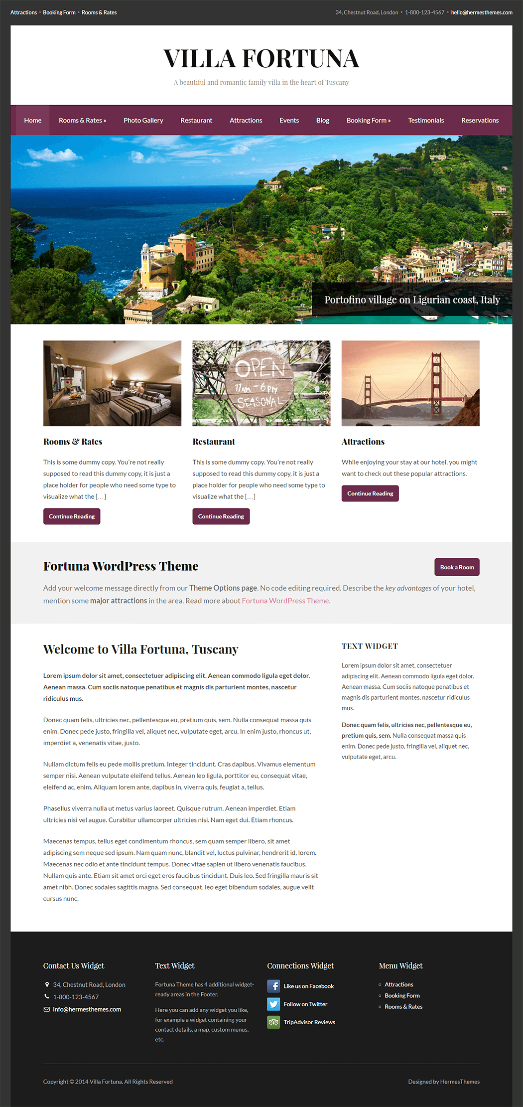 Fortuna WordPress Theme Screenshot